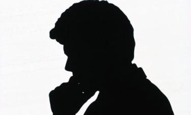 silhouette460