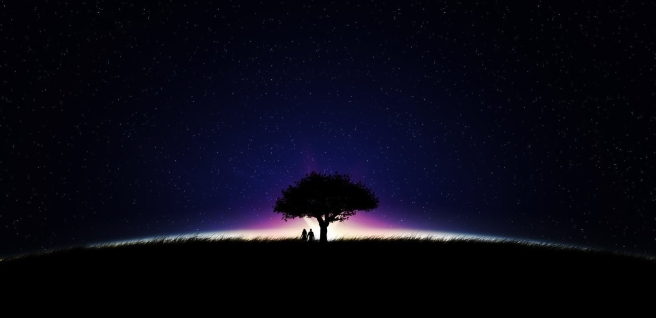 2896-silhouette-couple-tree-sky-star-night.jpg