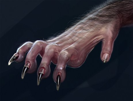 werewolf_hand_detail_2_by_liminalbean-dbntarz